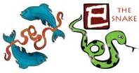 pisces snake horoscope zodiac sign pisces personality