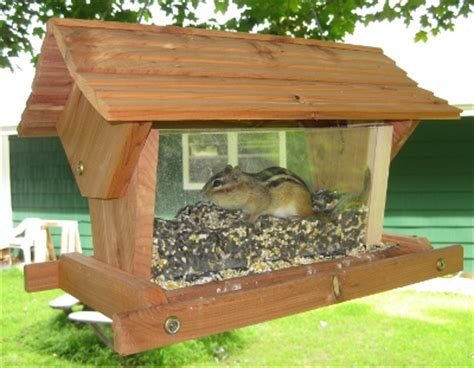 chipmunk house chipmunk feeders and houses tattoo design bild
