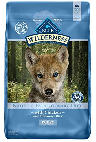 blue wolf food how to provide the best wolf food us bones