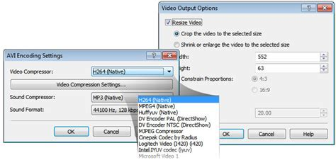 nch software video converter just download and go nch prism video converter