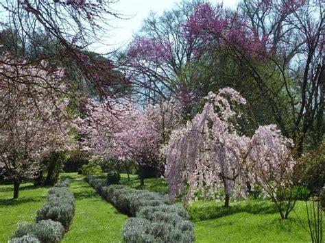 giardini ninfa orari giardino di ninfa