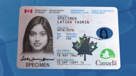 canadian citizenship card template desperately want to move to montreal ca apartment home