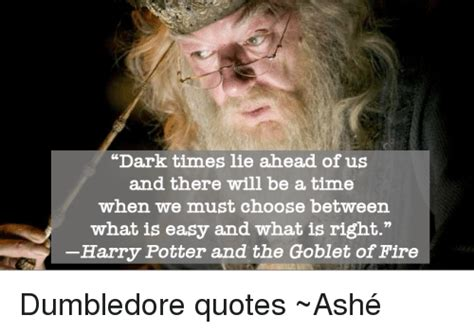 Ahead Of The Times by 25 Best Memes About Dumbledore Quotes Dumbledore Quotes