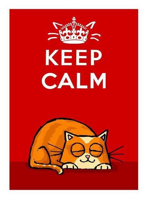 significado de las imagenes keep calm 579 mejores im 225 genes de keep calm en pinterest mantener