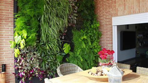 como hacer jardines verticales interiores jardines verticales alicante forestal