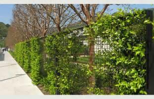 Green Trellis Fencing Greenscreen 174 Fencing Architype