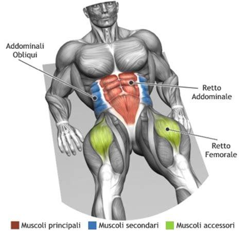 esercizi addominali obliqui interni addominali quanti sono allenamento efficace personal