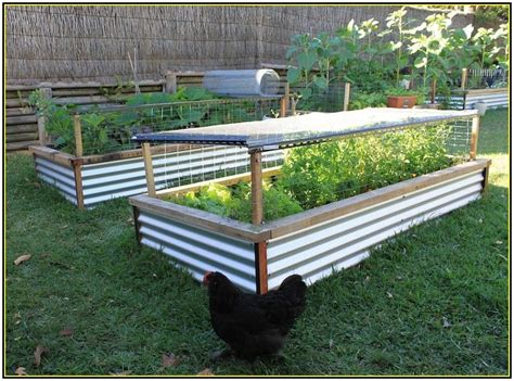 raised vegetable garden beds corrugated iron stroy krim