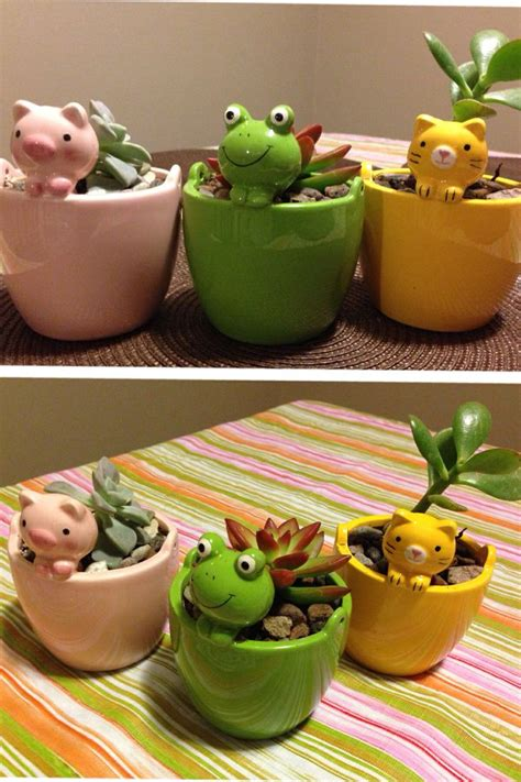 piggy and froggy pots fr daiso pots and