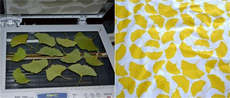 make your own fabric from leaves whats ur home story