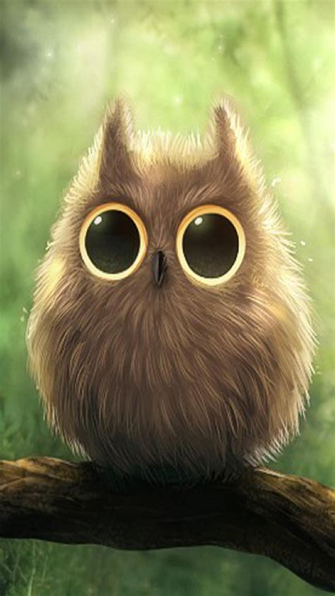 wallpaper for iphone 6 owl cute big eyes owl android wallpaper free download