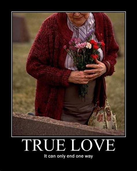 Memes About True Love - true love meme