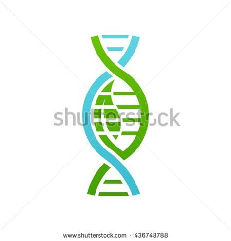logo graphics dna 17 best images about dna graphics on dna vector vector and biology