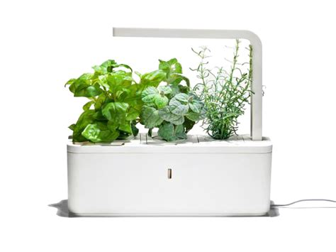 smart herb garden indoorgardenshop