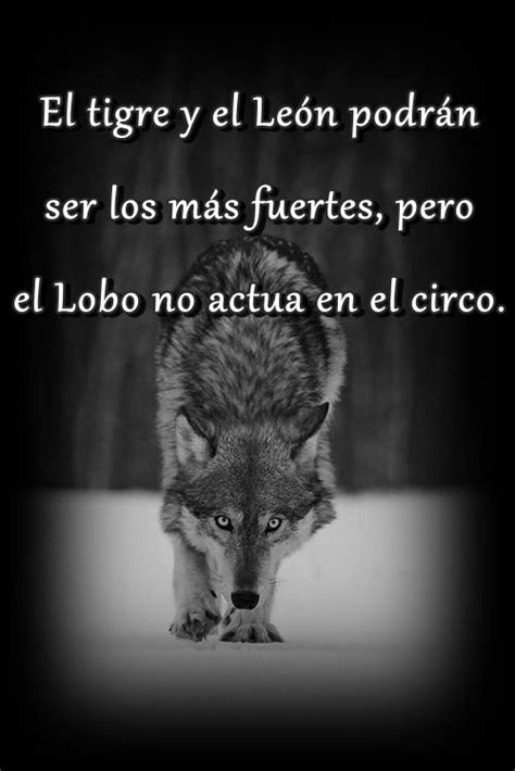 imagenes sentimientos y nada mas 196 best images about lycan on pinterest