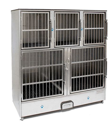 cage for dogs pet cages selfservedogwash