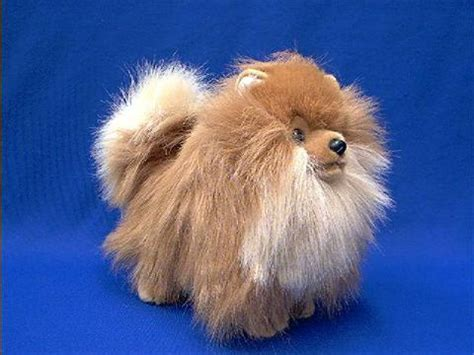 pomeranian stuff pomeranian stuffed animal plush at animal world 174