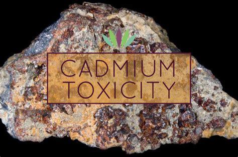 Cadmium Exposure Detox by Cadmium Toxicity Liveto110
