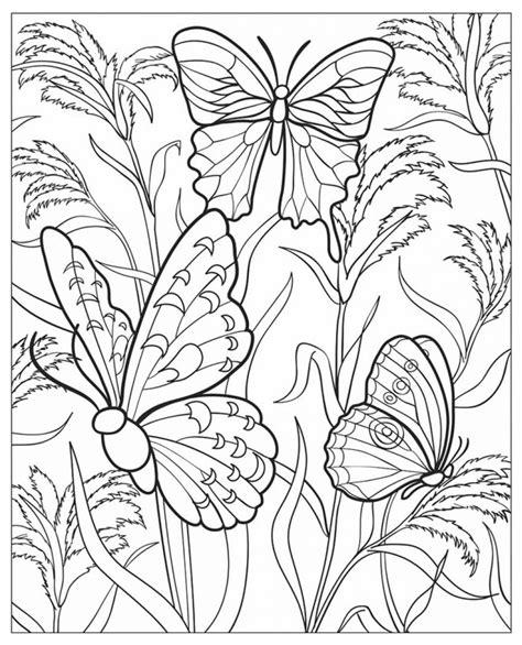 butterflies coloring book for adults books 20 dessins de coloriage adulte paysage a imprimer 224 imprimer
