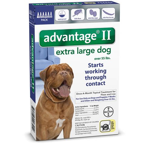 advantage for dogs 55 lbs 6 month advantage ii flea large for dogs 55 lbs