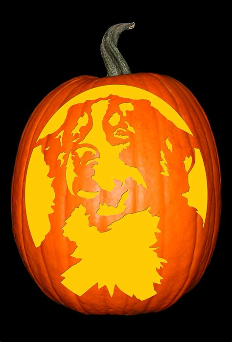 is pumpkin bad for dogs bernese mountain the custom punkin stencil co