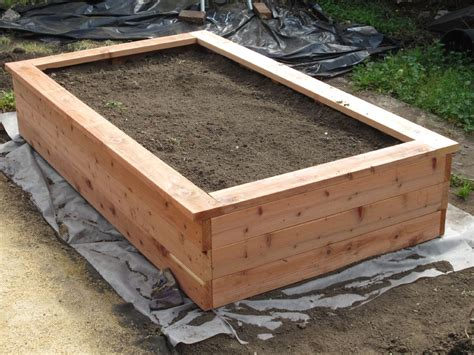 Planter Box by Building A Planter Box And Planting Fruits And Veggies