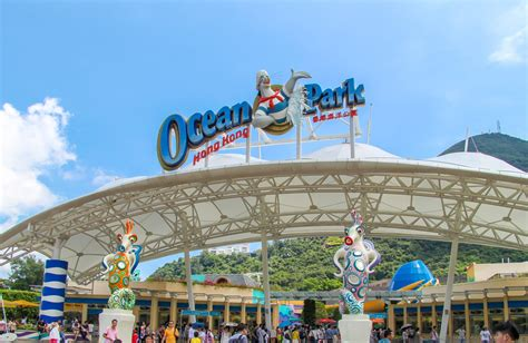 tips  visiting ocean park hong kong  kids ocean
