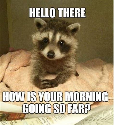 Funny Hello Meme - hello there how is your morning going so far pictures