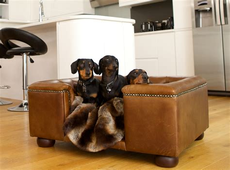 leather couches and dogs luxury dog beds designer dog sofas as seen on the