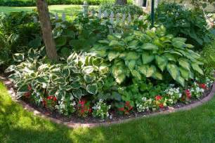 hosta shade garden heaven on earth pinterest