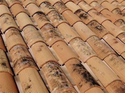 tuile pour faible pente 20 tuiles terre cuite portrait de famille