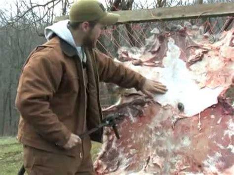 Deer Tanned Cowhide - brain tanning deer hides