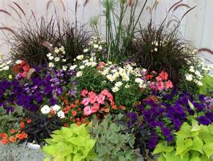 Flower Gardens In Florida Container Flower Gardening In Florida Ideas Home Inspirations