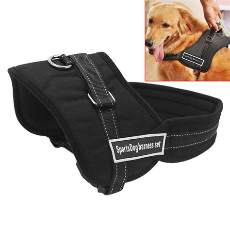 Pet Harness Belt For Car seat belt harness large seat get free image about