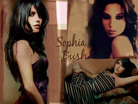 sophia bush brooke davis wallpaper 2367053 fanpop