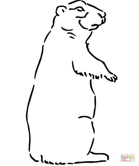 puppy coloring pages pdf prairie dog coloring online super coloring