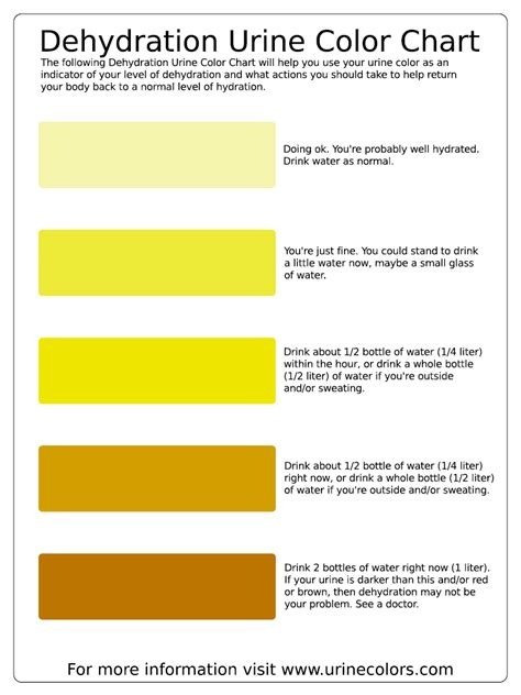 color of urine chart adieha s weight loss journey dehydration urine colour chart