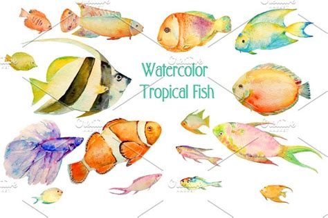 pesci clipart watercolor clipart tropical fish illustrations on