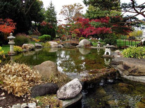 patio water garden water gardens findingtimetowrite