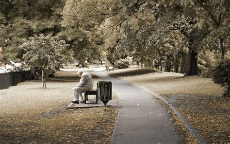 old man bench stock photo young man sitting on bench at the park and