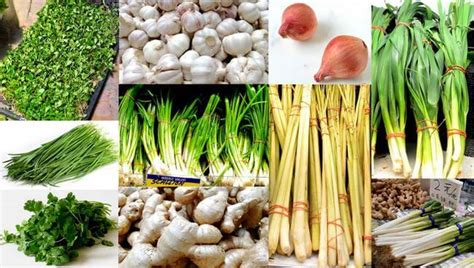 vegetables used in asian cooking aromatics asian chives onions and peppers the