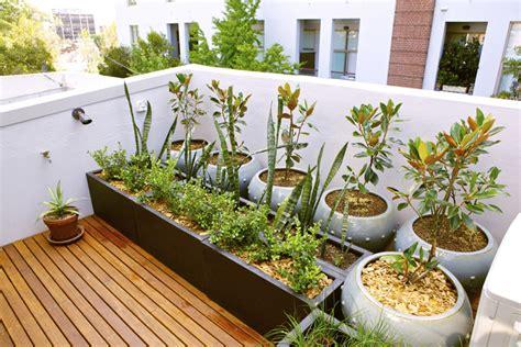 membuat atap rumah mudahnya membuat taman di atap rumah rumah dan gaya