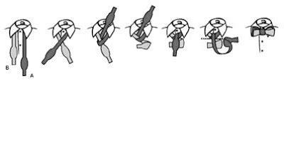 gambar tutorial dasi tentang semua cara memakai dasi