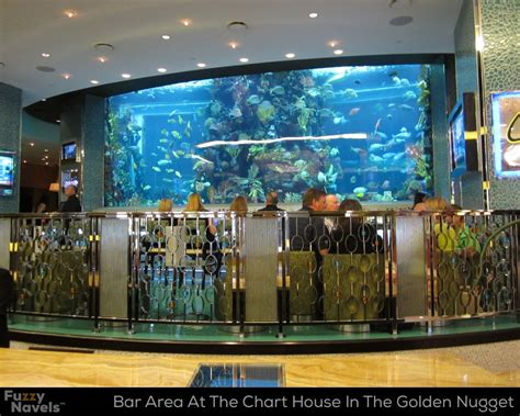 chart house las vegas bar seating area in front of huge aquarium at the chart house fuzzy navels