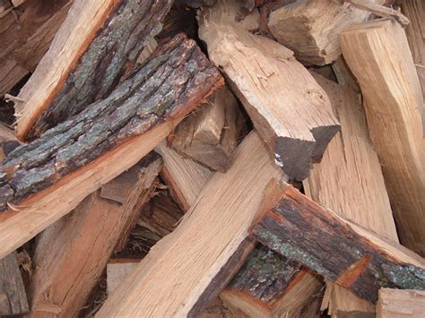 6 of the best types of firewood to burn in cfires