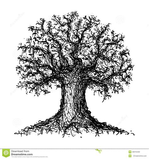sketched tree sketch of a tree stock vector image of tree sketch