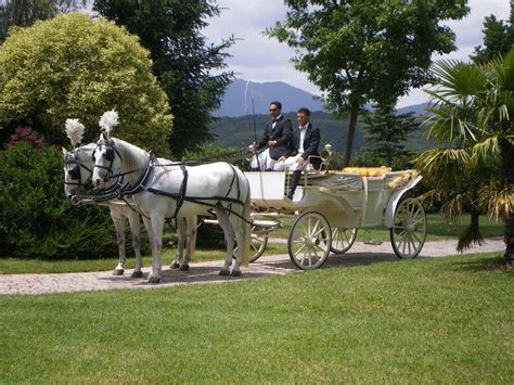 carrozza con cavalli carrozza con cavalli fiani autonoleggio l auto tuo