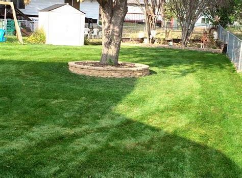 Brekke Fireplace Rochester Mn - alex s lawn care snow removal rochester mn cylex