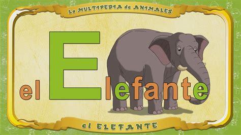 imagenes de animales por la letra e la multipedia de animales letra e el elefante youtube