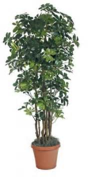 artificial decorative trees for the home flower arrangements for home foter